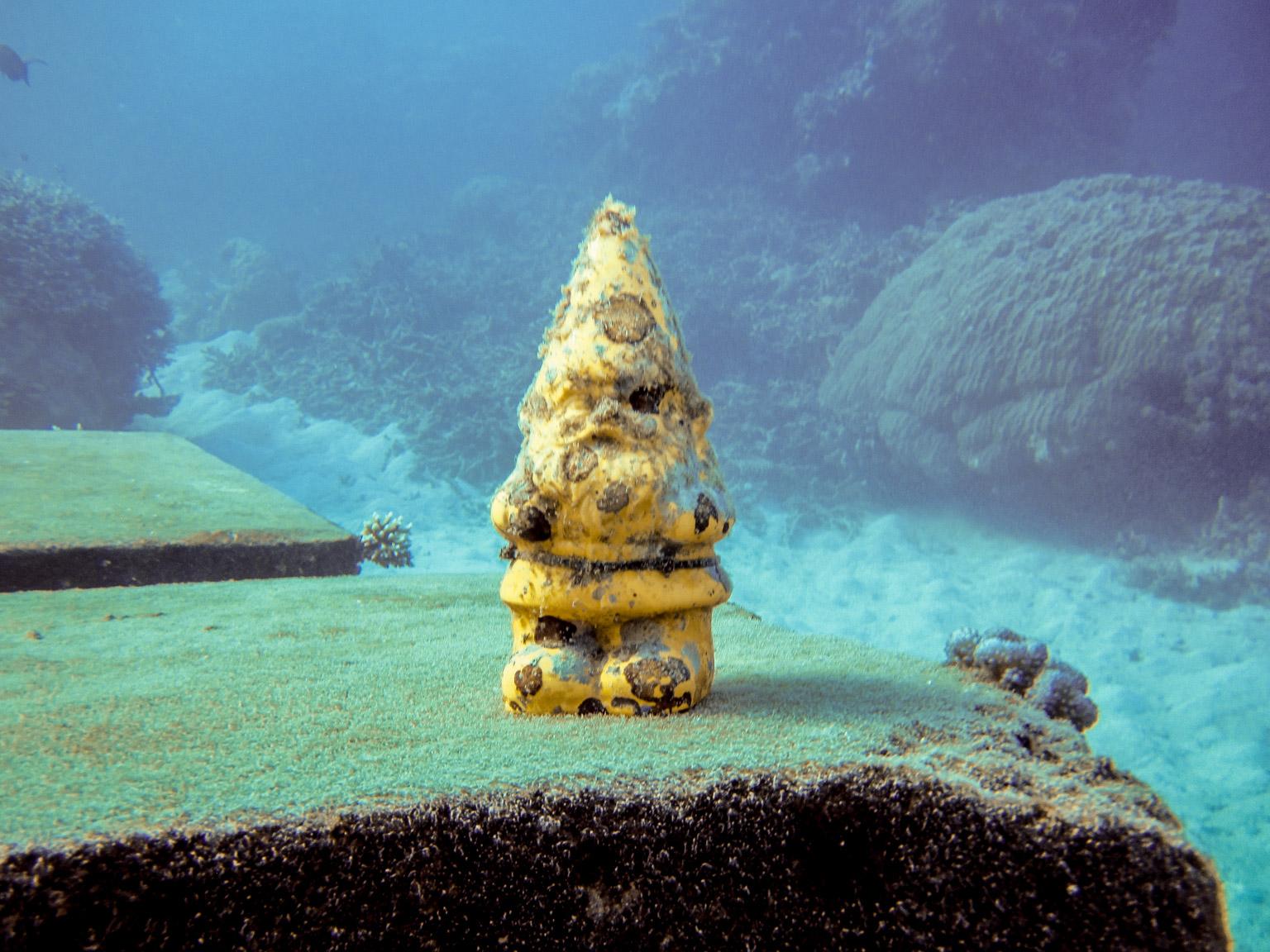 Great Barrier Reef February 2016 Douglas Stebila