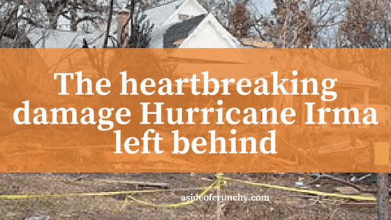 home damaged by hurricane
