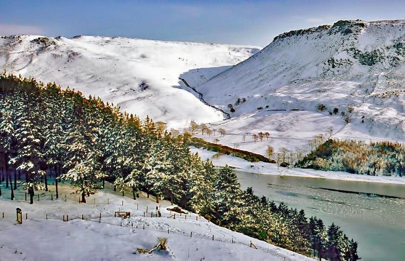 WEB-SNOW