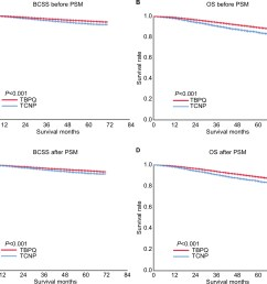 figure 1 relationship between tcnp tbpq and bcss os of breast cancer patients  [ 1879 x 1571 Pixel ]