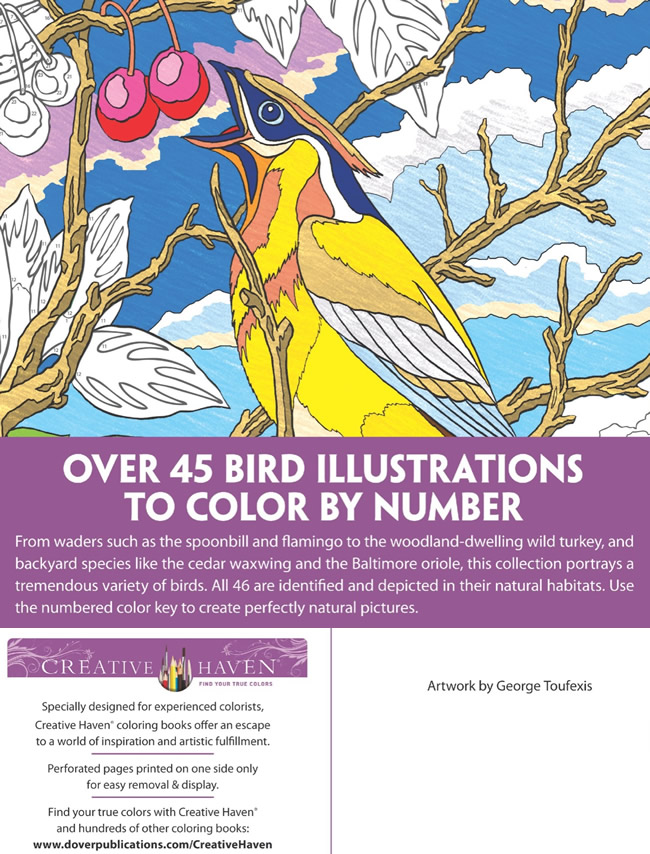 Gambar Creative Haven Birds Color By Number Coloring Book Jpeg