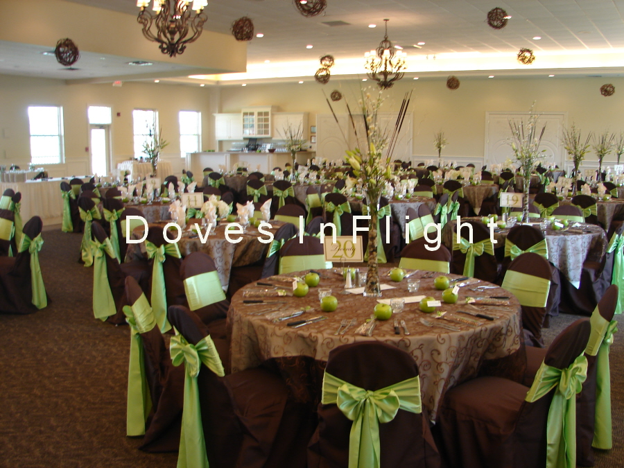 brown chair covers white wooden fold chairs of lansing doves in flight decorating university club with light blue sash