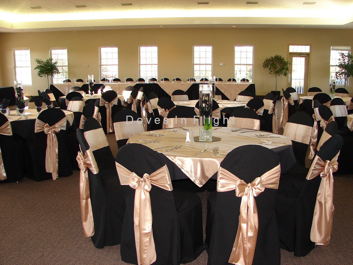 champagne banquet chair covers scandinavian design of lansing doves in flight decorating