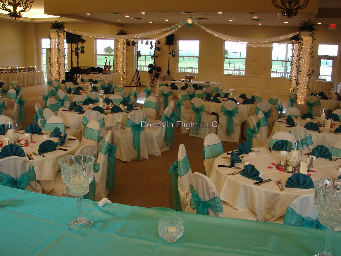 teal chair covers vermont company of lansing / doves in flight decorating