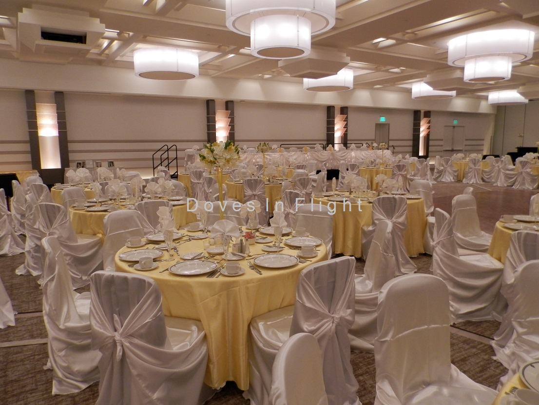 banquet hall chair covers nailhead trim dining chairs of lansing doves in flight decorating