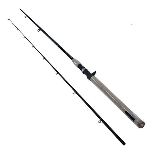 Daiwa DXS Salmon/Steelhead 9'6