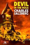 Devil in the Hole by Charles Salzberg
