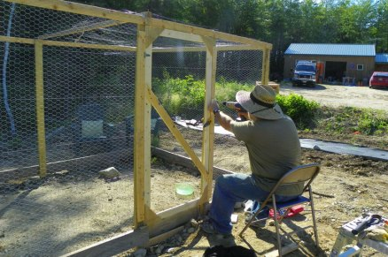 Completing the chicken run