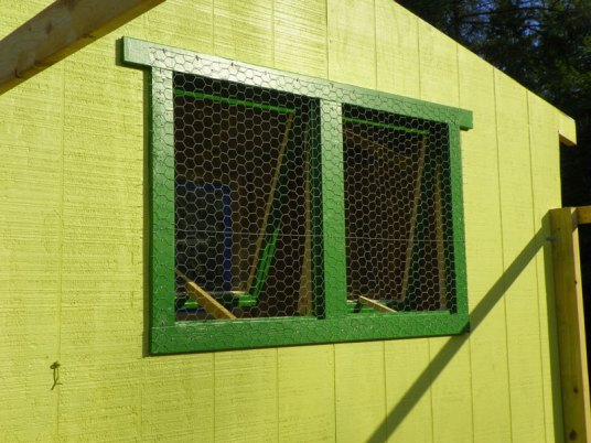 Chicke wire over the opening windows