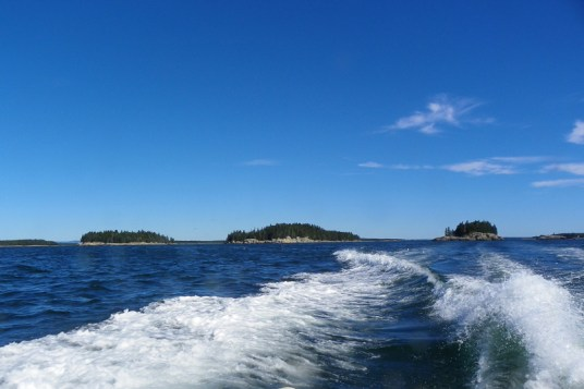 Douglas Islands in Narraguagus Bay