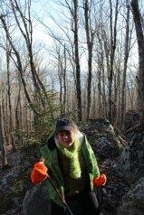 hike up Catherine's Mountain