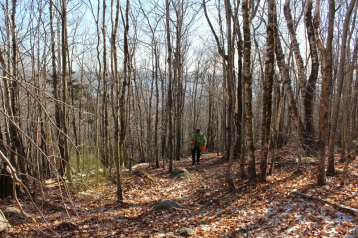 Hiking up Catherine's Mountain - this is not the steep part!