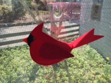 Martha from Maine used fabric paint to create the face of this cardinal.