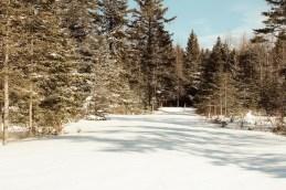 pristine snowy road