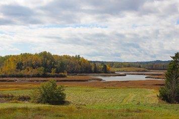 Autumn on the East Machias River
