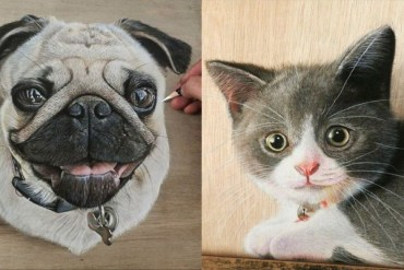 Hyper Realistic Drawings on Wooden Boards