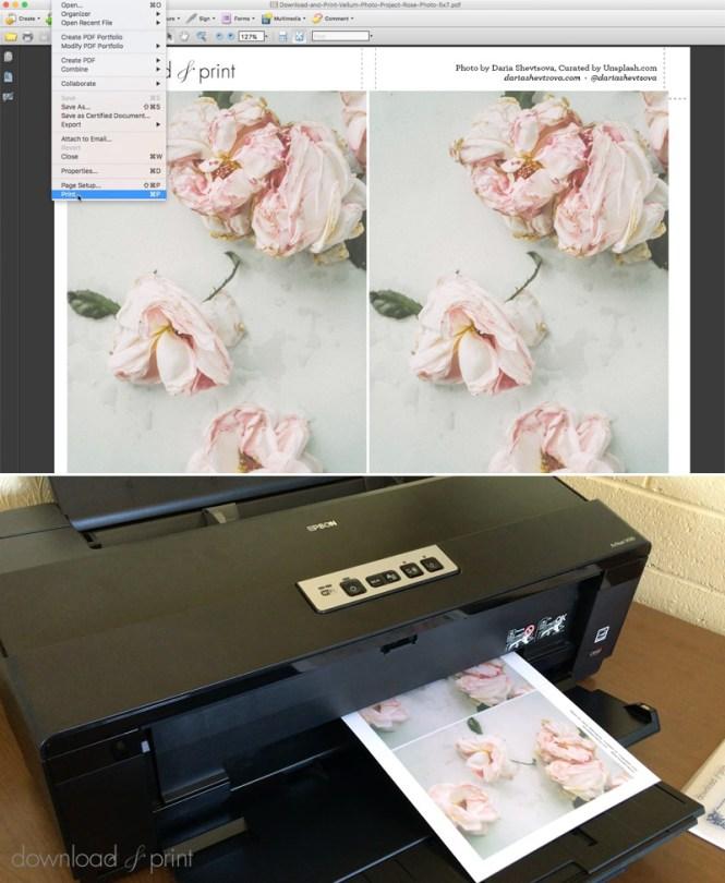 Sweet Letterpress Design Wedding Invitations Printing In Boulder Colorado