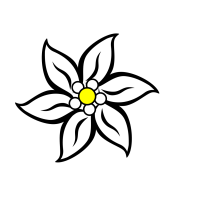 Edelweiss PNG, SVG Clip art for Web   Download Clip Art ...