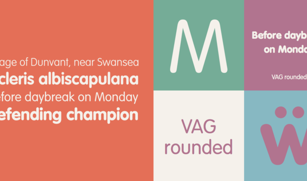 Vag Rounded Font Free