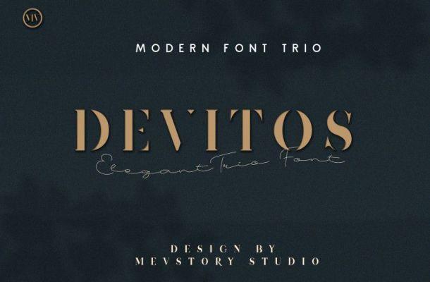 Devitos Modern Elegant Serif Font