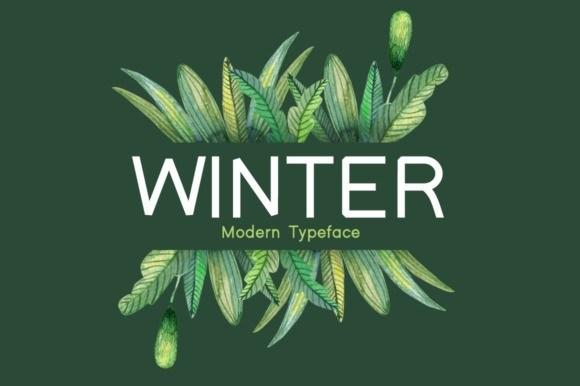 Winter Sans Serif Font