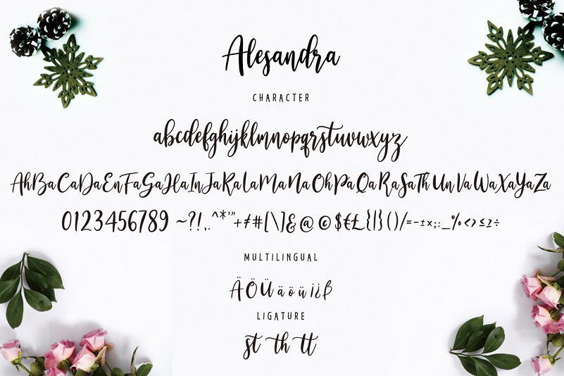 Alesandra-Font-3