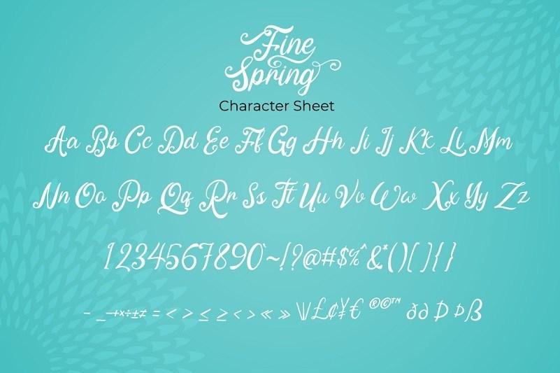 Fine-Spring-Font-3