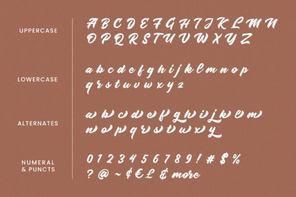 Radens-Script-Font-3