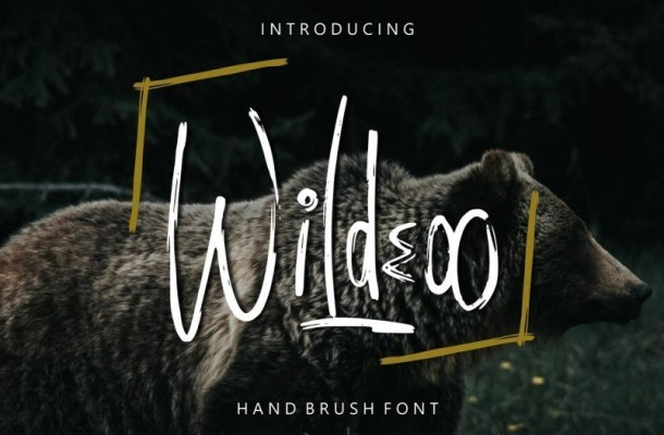 Wildeoo Hand Brush Font