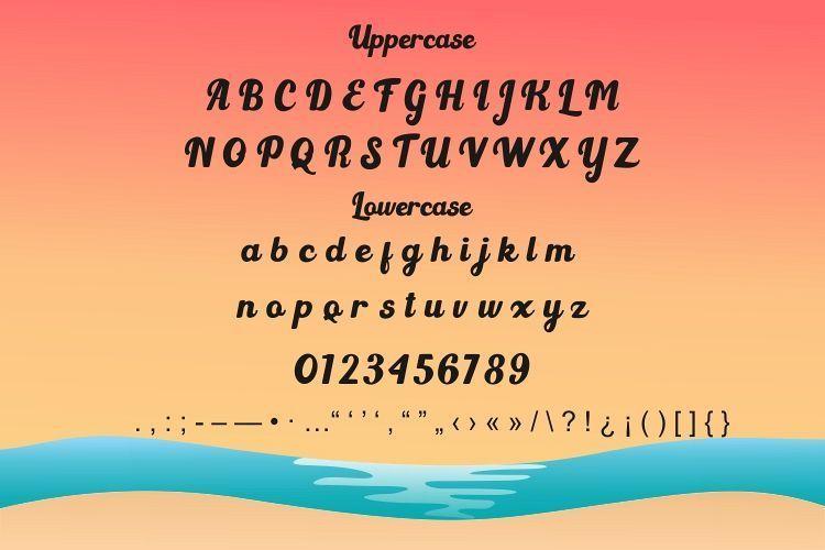 Light-Beach-Script-Font-3
