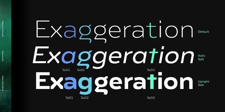 Regave-Sans-Serif-Font-2
