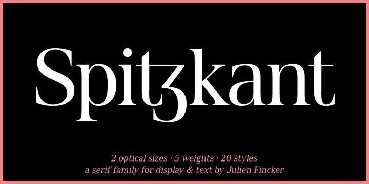 Spitzkant-Serif-Font-1-1