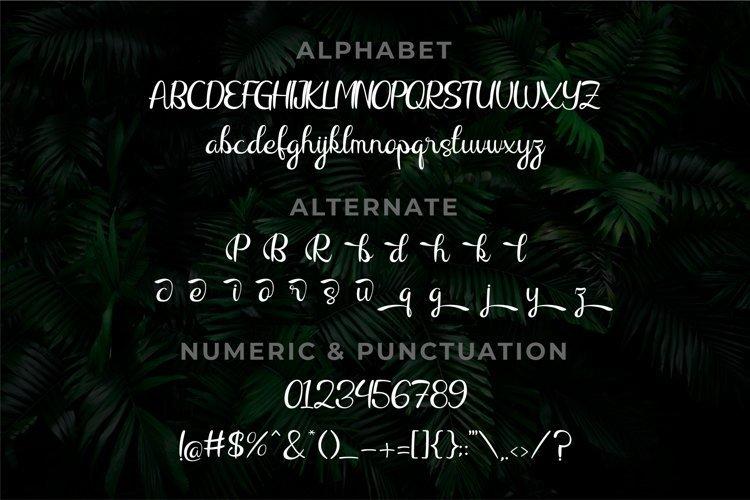 Raliqa-Modern-Calligraphy-Font-4