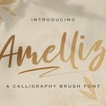 Amelliz Brush Script Font