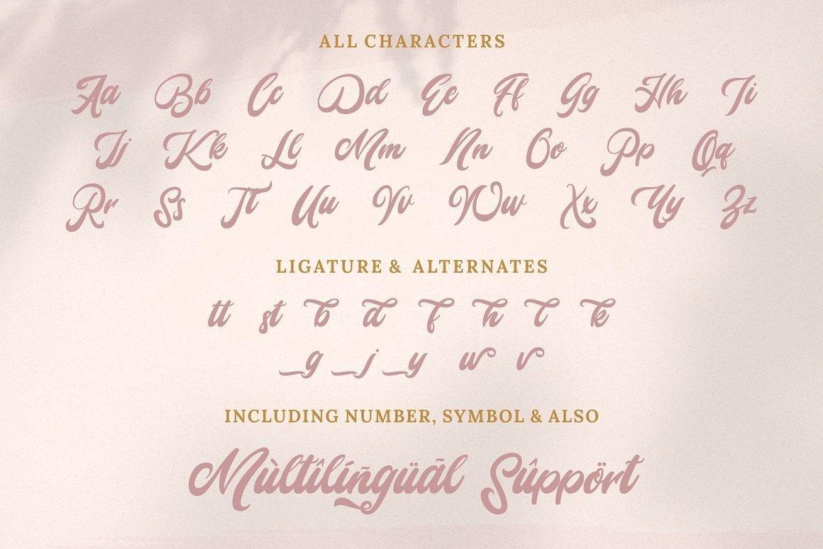 Mady-Risaw-Modern-Script-Font-3