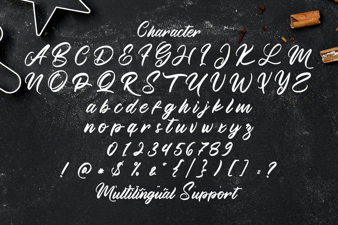 Manthesy-Bold-Script-Font-4