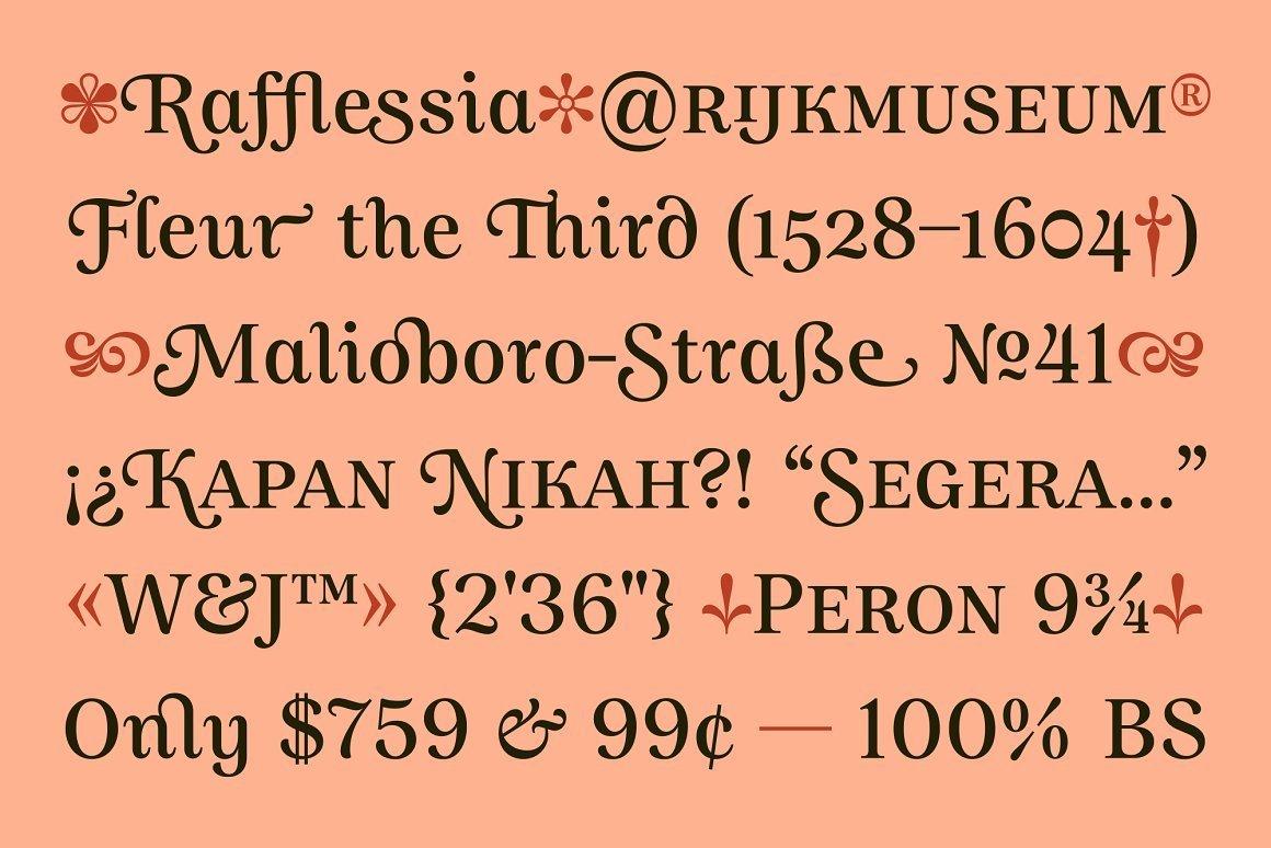 Allust-Serif-Typeface-2