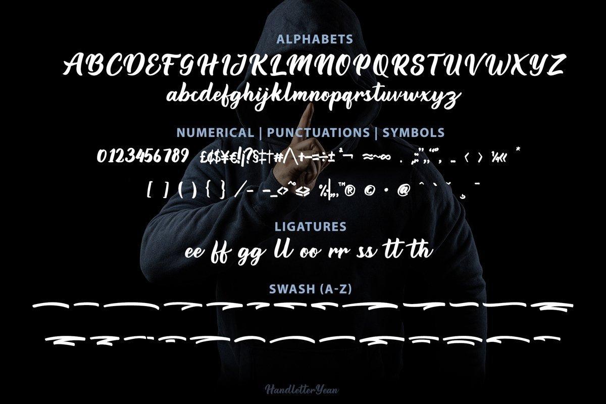 Darion-Handwritten-Script-Font-4