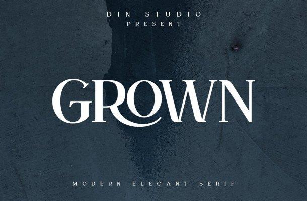 Grown Elegant Serif Font