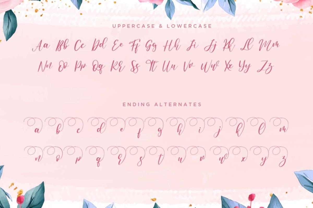 Anandya-Calligraphy-Script-Font-3