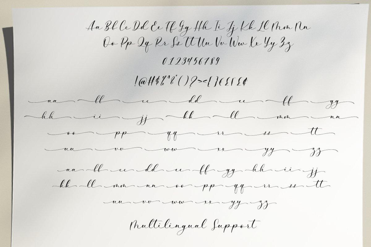 Barlista-Stylish-Handwritten-Script-Font-3