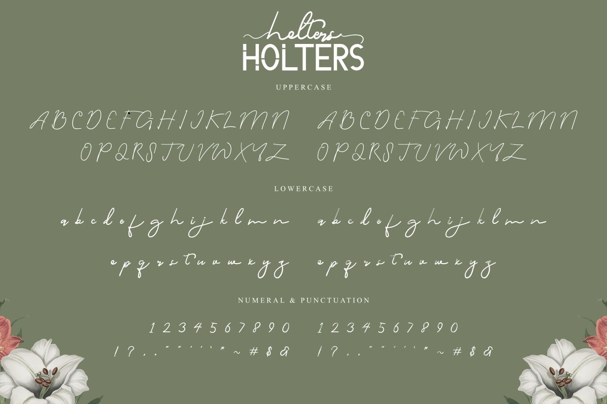 Holters-Font-Duo-3
