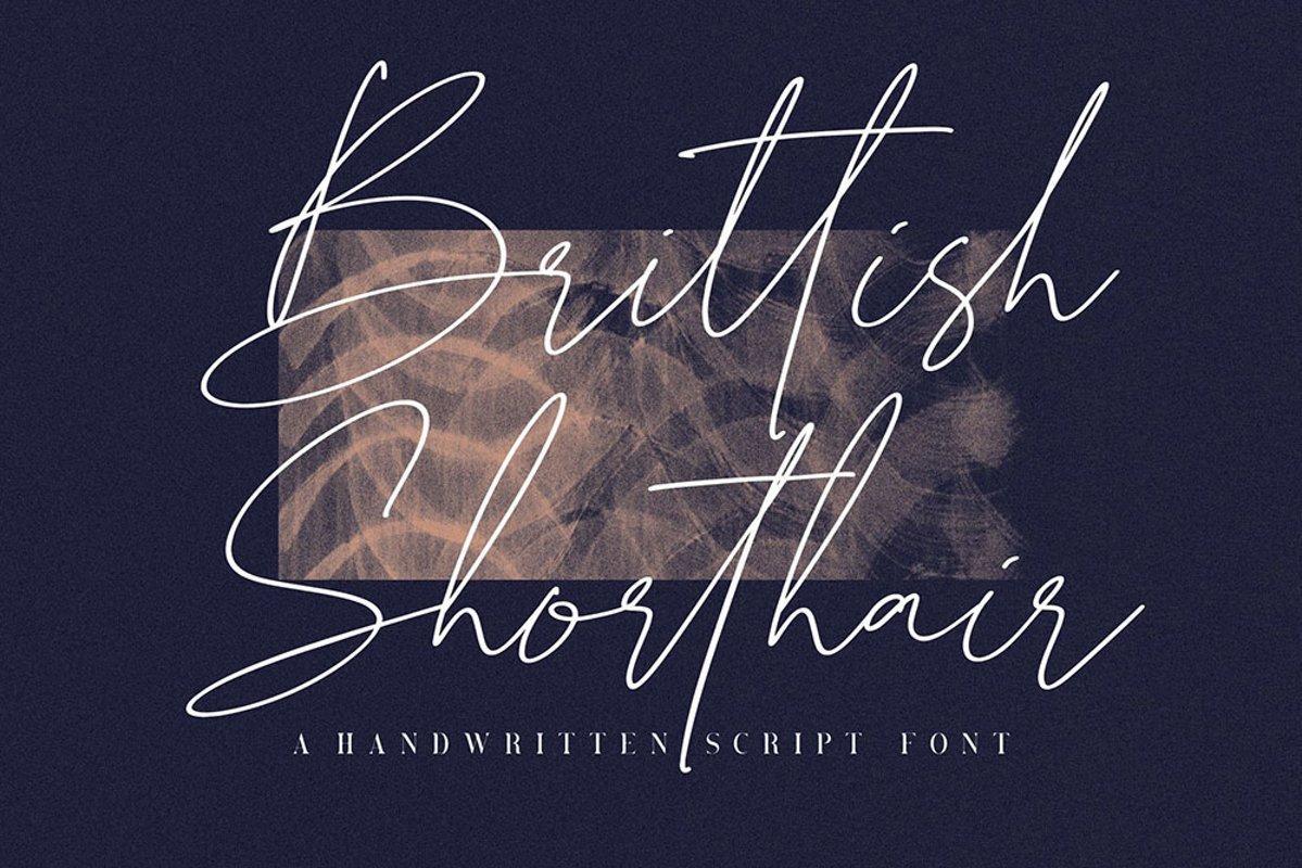 Brittish-Sorthair-Font