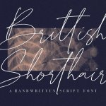 Brittish Sorthair Font
