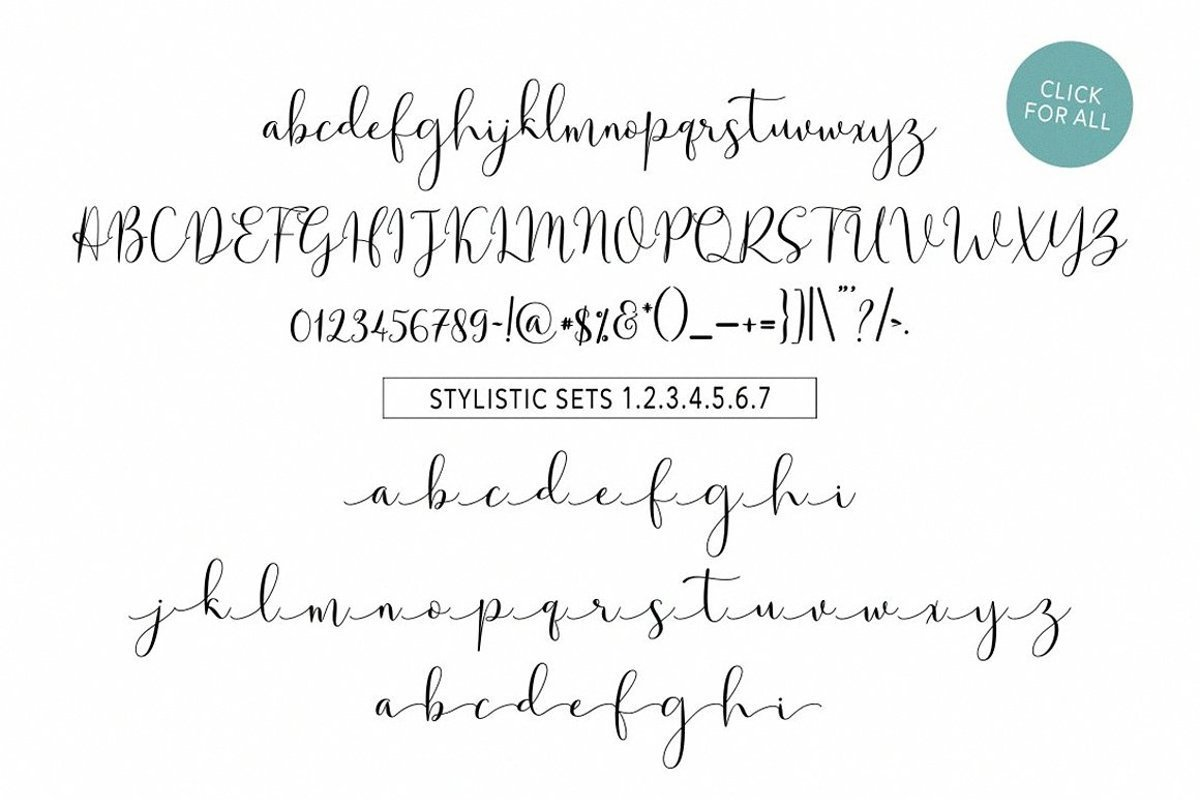 Solidar-Modern-Calligraphy-Script-Font-3