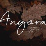 Angora Font