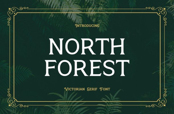 North-Forest-Serif-Typeface-1