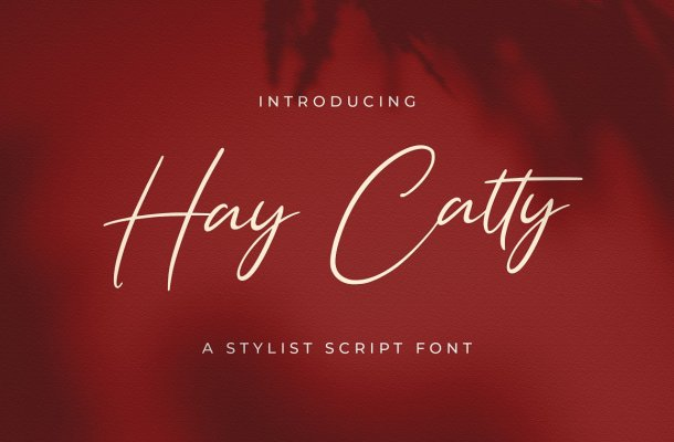 Hay Catty Font