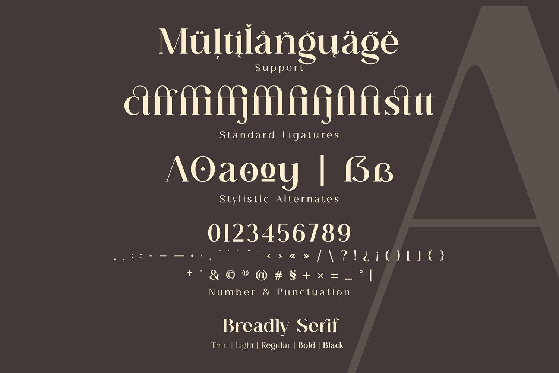 Breadley-Serif-Font-3
