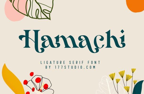 Hamachi-Font